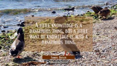 A little knowledge is a dangerous thing but a little want of knowledge is also a dangerous thing.