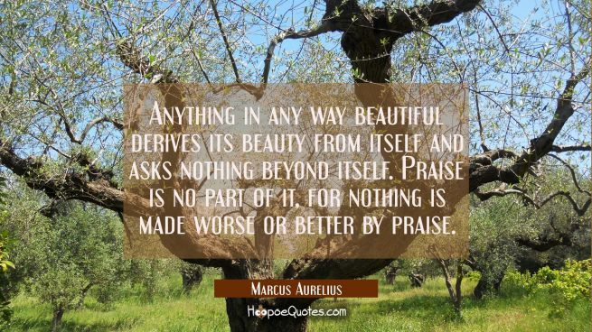 Anything in any way beautiful derives its beauty from itself and asks nothing beyond itself. Praise