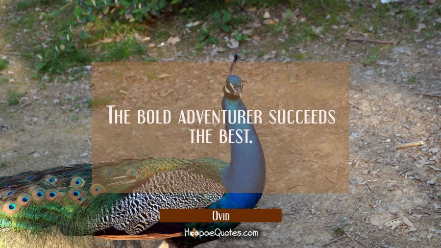 The bold adventurer succeeds the best. Ovid Quotes
