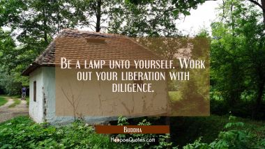 Be a lamp unto yourself. Work out your liberation with diligence.