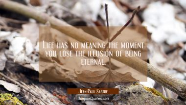Life has no meaning the moment you lose the illusion of being eternal.