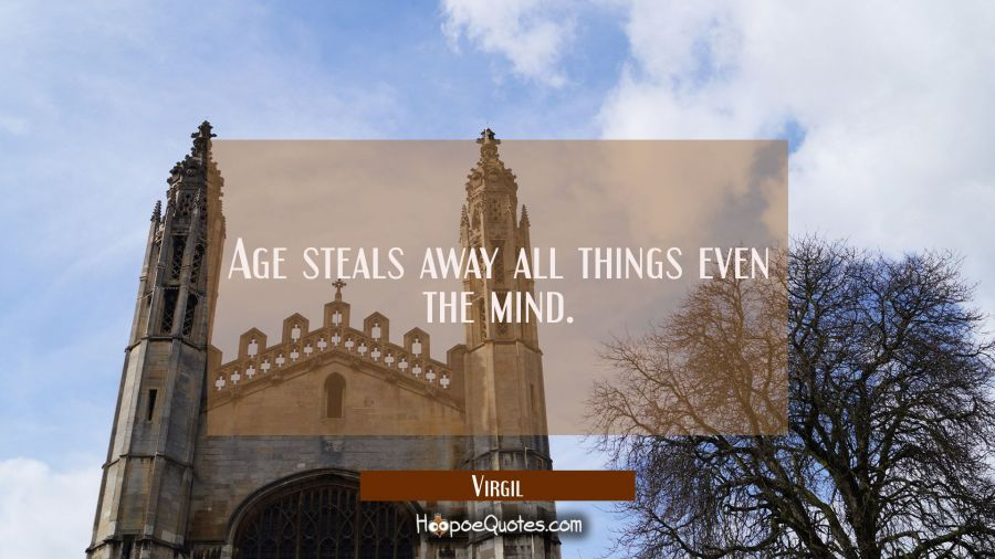 Age steals away all things even the mind. Virgil Quotes