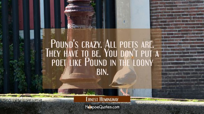Pound's crazy. All poets are. They have to be. You don't put a poet like Pound in the loony bin.
