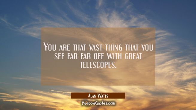 You are that vast thing that you see far far off with great telescopes.