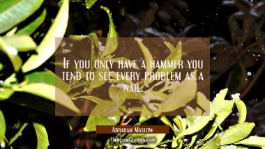 If you only have a hammer you tend to see every problem as a nail.
