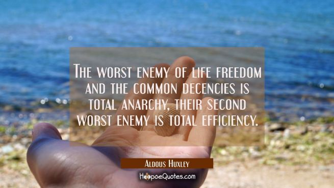 The worst enemy of life freedom and the common decencies is total anarchy, their second worst enemy