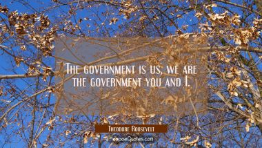The government is us, we are the government you and I.