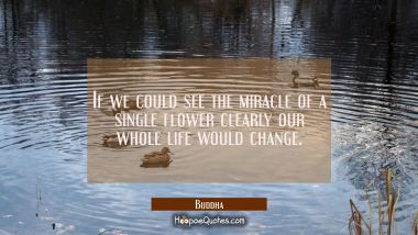 If we could see the miracle of a single flower clearly our whole life would change. Buddha Quotes