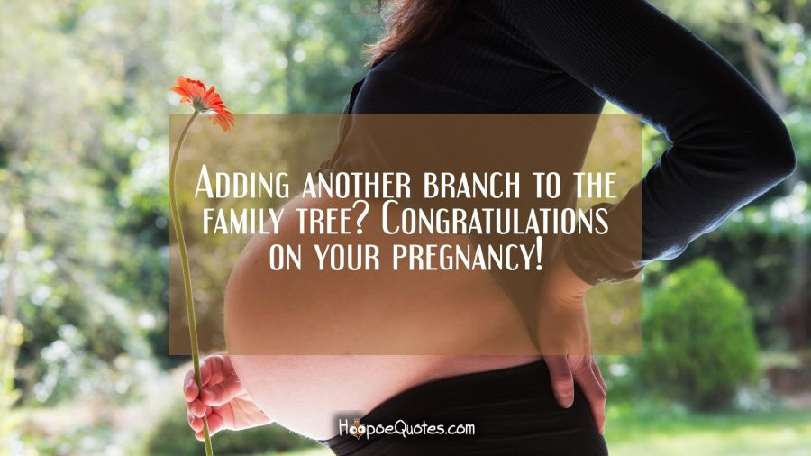 Adding another branch to the family tree? Congratulations on your pregnancy! Pregnancy Quotes