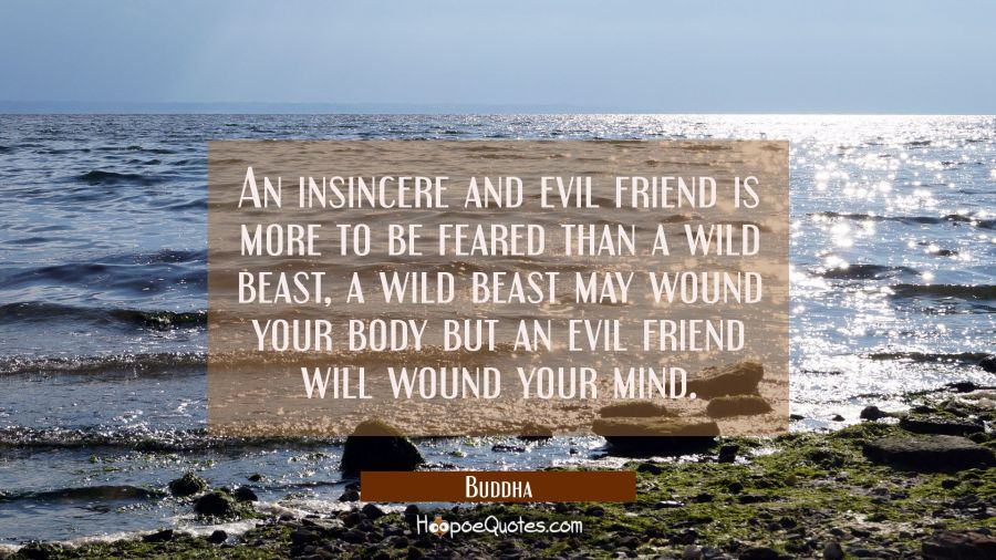 An insincere and evil friend is more to be feared than a wild beast, a wild beast may wound your bo Buddha Quotes