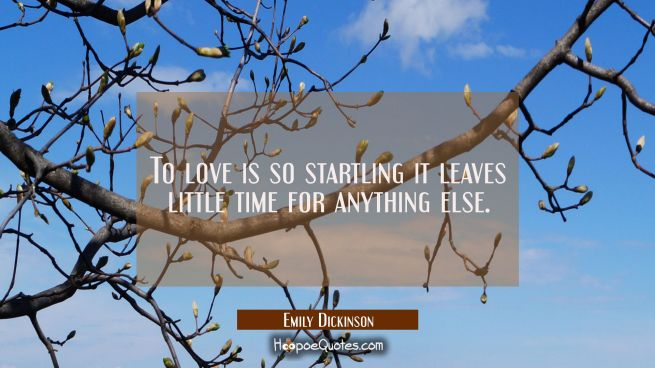To love is so startling it leaves little time for anything else.