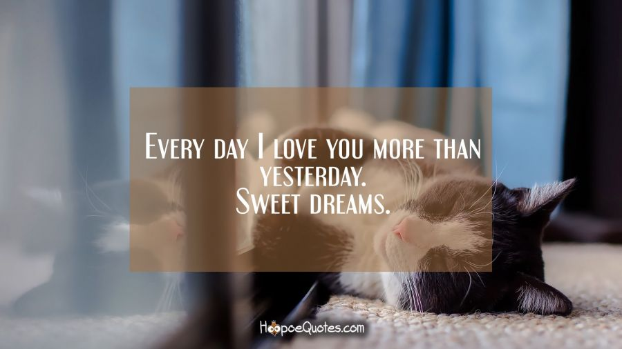 Every day I love you more than yesterday. Sweet dreams. Good Night Quotes