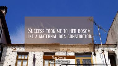Success took me to her bosom like a maternal boa constrictor.
