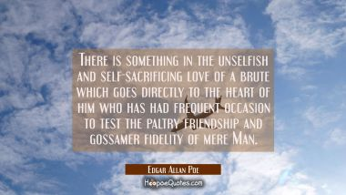 There is something in the unselfish and self-sacrificing love of a brute which goes directly to the