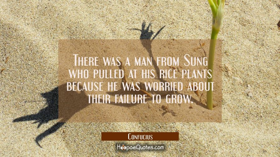 There was a man from Sung who pulled at his rice plants because he was worried about their failure Confucius Quotes