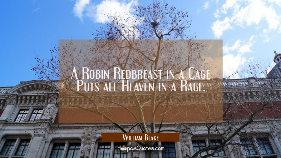 A Robin Redbreast in a Cage Puts all Heaven in a Rage William Blake Quotes