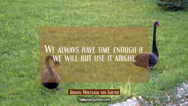 We always have time enough if we will but use it aright.