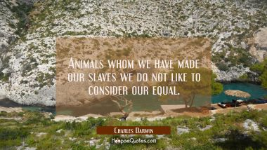 Animals whom we have made our slaves we do not like to consider our equal.