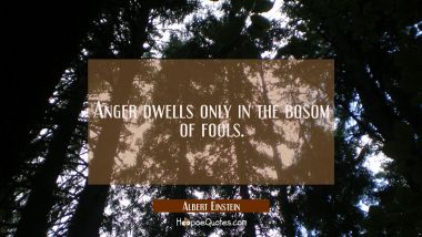 Anger dwells only in the bosom of fools. Albert Einstein Quotes