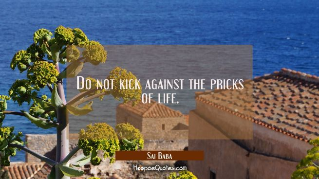 Do not kick against the pricks of life.