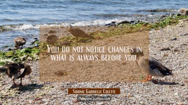 You do not notice changes in what is always before you. Sidonie Gabrielle Colette Quotes
