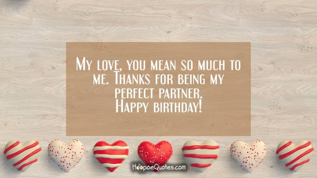 My love, you mean so much to me. Thanks for being my perfect partner. Happy birthday!