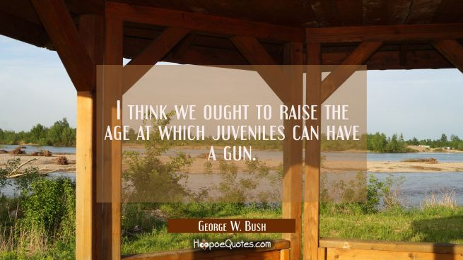 I think we ought to raise the age at which juveniles can have a gun.