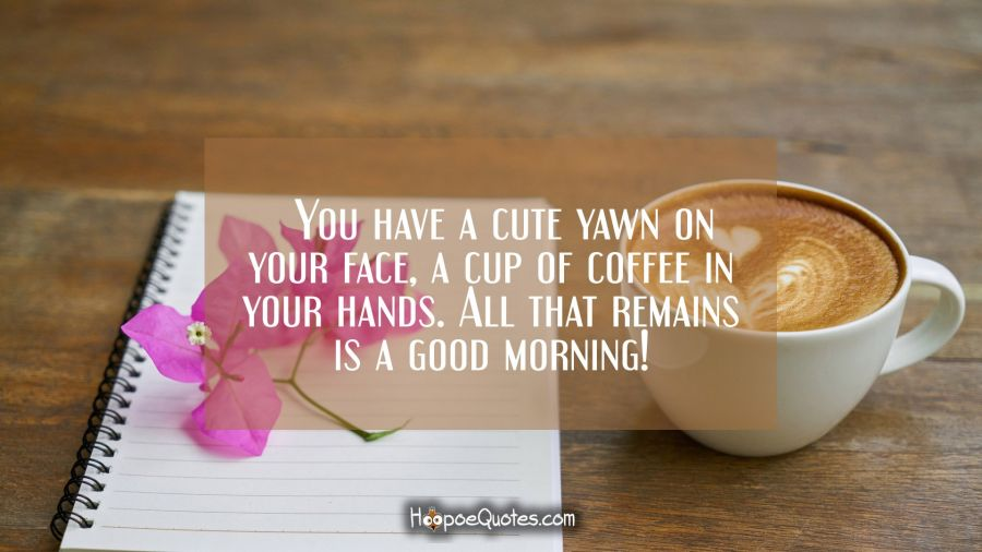 You have a cute yawn on your face, a cup of coffee in your hands. All that remains is a good morning! Good Morning Quotes