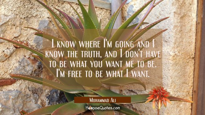I know where I'm going and I know the truth, and I don't have to be what you want me to be. I'm free to be what I want.