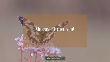 Morning! I love you! Good Morning Quotes