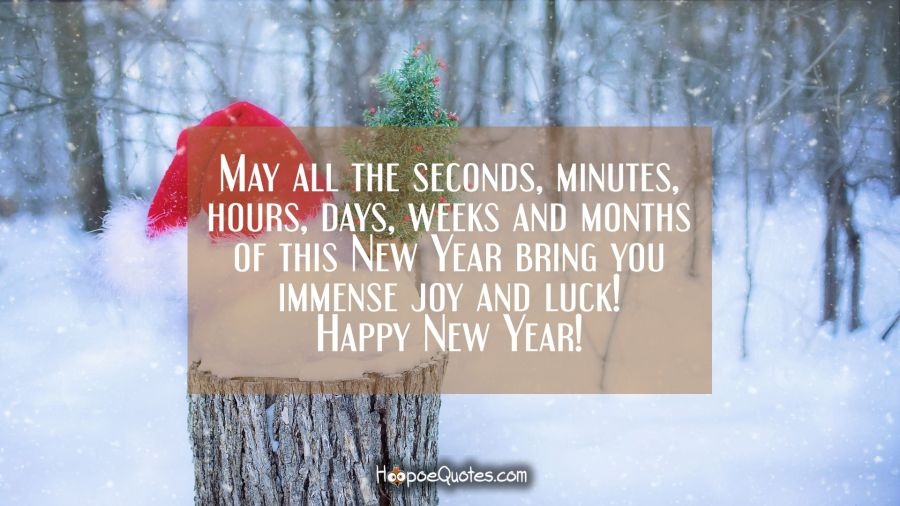 May all the seconds, minutes, hours, days, weeks and months of this New Year bring you immense joy and luck! Happy New Year! New Year Quotes