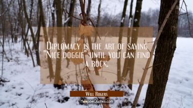 "Diplomacy is the art of saying ""Nice doggie"" until you can find a rock. Will Rogers Quotes"