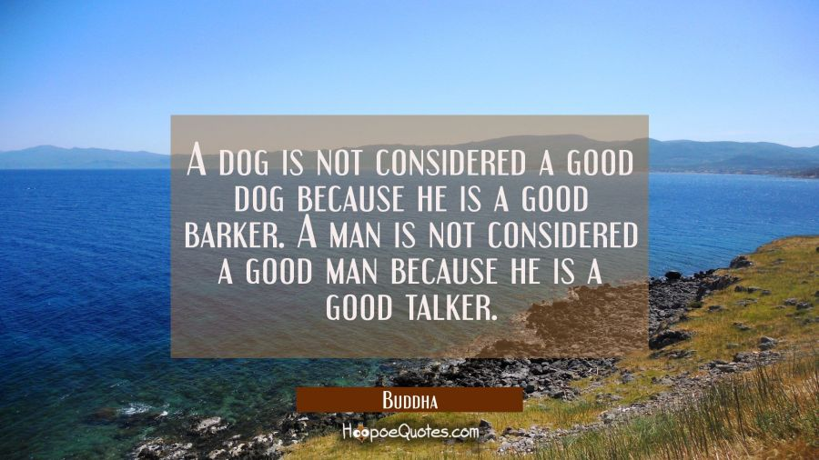 A dog is not considered a good dog because he is a good barker. A man is not considered a good man Buddha Quotes