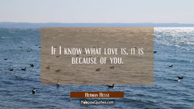 If I know what love is, it is because of you. Herman Hesse Quotes