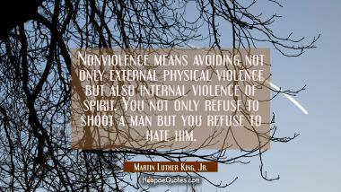 Nonviolence means avoiding not only external physical violence but also internal violence of spirit