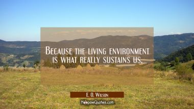 Because the living environment is what really sustains us. E. O. Wilson Quotes