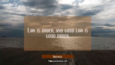 Law is order and good law is good order.