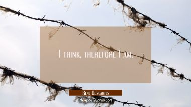 I think, therefore I am.