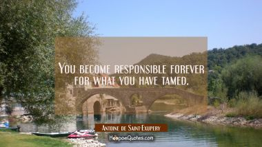 You become responsible forever for what you have tamed.