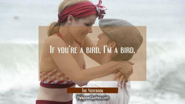 If you're a bird, I'm a bird. Quotes
