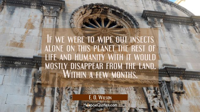 If we were to wipe out insects alone on this planet the rest of life and humanity with it would mos