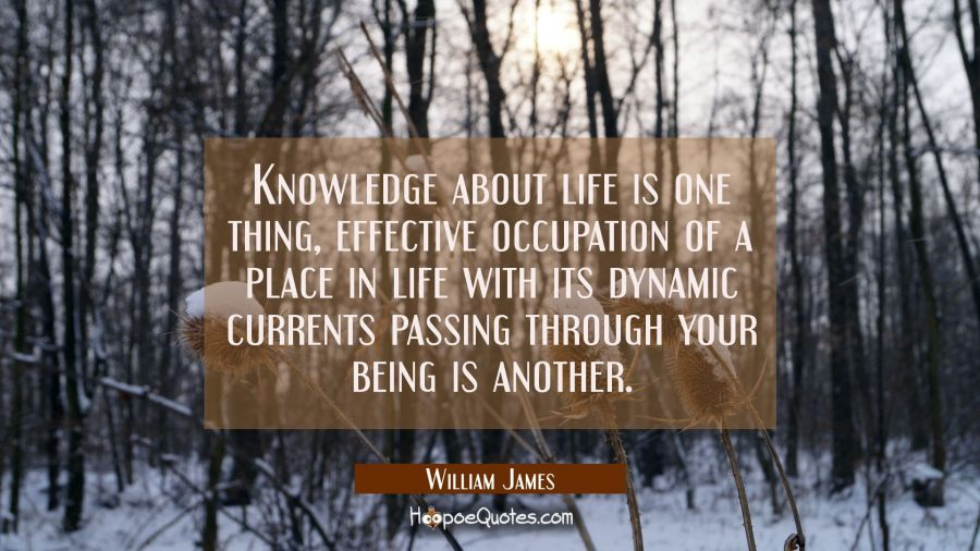 Knowledge about life is one thing, effective occupation of a place in life with its dynamic current William James Quotes
