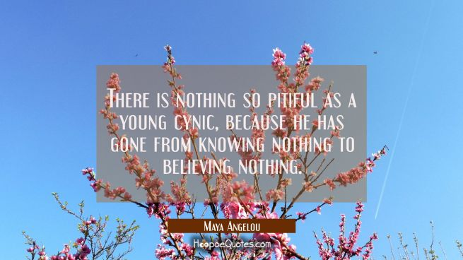 There is nothing so pitiful as a young cynic because he has gone from knowing nothing to believing
