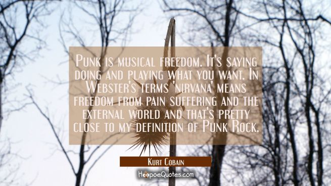 Punk is musical freedom. It's saying doing and playing what you want. In Webster's terms 'nirvana'