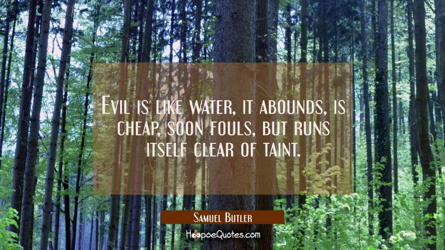 Evil is like water it abounds is cheap soon fouls but runs itself clear of taint. Samuel Butler Quotes