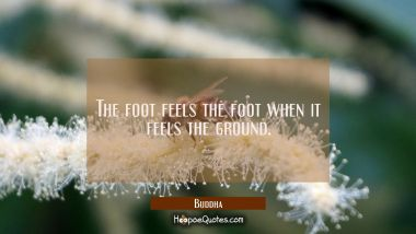 The foot feels the foot when it feels the ground.
