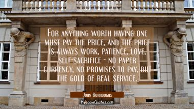 For anything worth having one must pay the price, and the price is always work patience love self-s