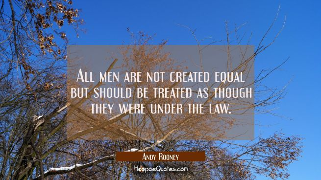 All men are not created equal but should be treated as though they were under the law.