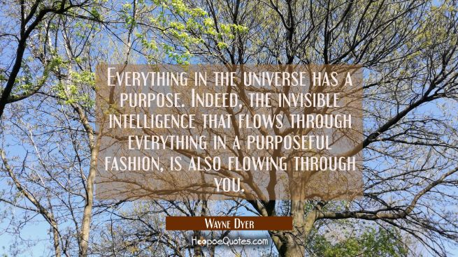 Everything in the universe has a purpose. Indeed the invisible intelligence that flows through ever