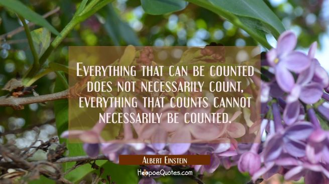 Everything that can be counted does not necessarily count, everything that counts cannot necessaril
